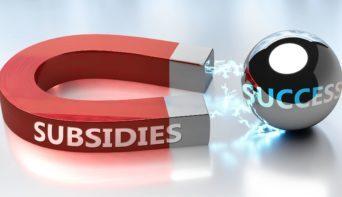 Subsidies in Duitsland